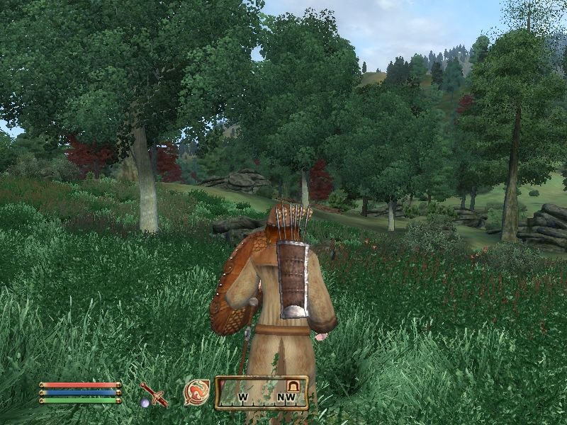 157799-the-elder-scrolls-iv-oblivion-windows-screenshot-ahh-it-feels